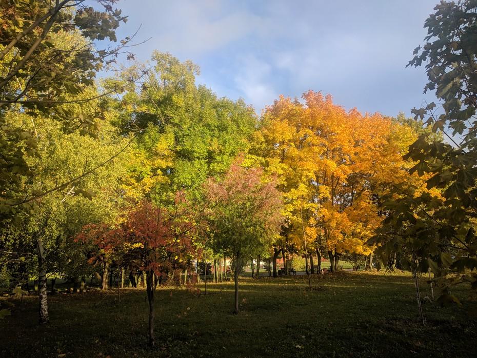 2018-10-06 20:18:45: Осень в разгаре
